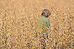 Heritage Days Festival. Union County. Boy playing in soy bean field.
