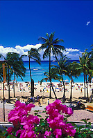 Waikiki Beach with palm trees and tourists on a sunny day