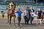 TORONTO, ON - SEPTEMBER 17: Untamed Domain #1, ridden by Joe Bravo, wins the Summer Stakes at Woodbine Racetrack on September 17, 2017 in Toronto, Ontario. (Photo by Scott Serio/Eclipse Sportswire/Getty Images)