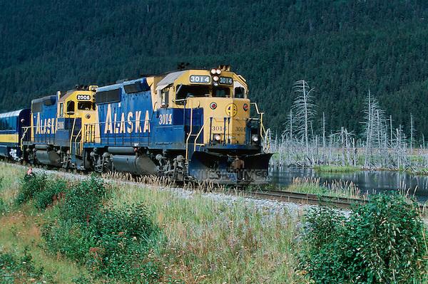 Train along Denali Highway, Alaska, USA