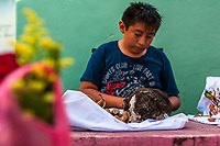 """A Mayan boy cleans a dried-up scull of a deceased family member during the bone cleansing ritual at the cemetery in Pomuch, Mexico, 28 October 2019. Every year on the Day of the Dead, people of Pomuch, a small Mayan community in the south of Mexico, visit the cemetery to take part in a pre-Hispanic tradition of cleaning of bones of their departed relatives (""""Limpia de huesos""""). People who die in Pomuch are firstly buried for three years in an above-ground tomb then the dried-up bodies are taken out, bones are separated, wrapped in a decorated cloth, put into a wooden crate, and placed on display among flowers for veneration."""