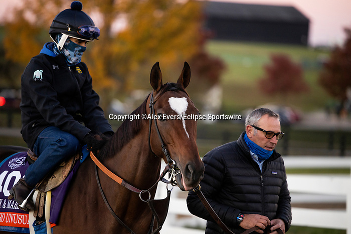 November 4, 2020: Mucho Unusual, trained by trainer Tim Yakteen, exercises in preparation for the Breeders' Cup Filly & Mare Turf at Keeneland Racetrack in Lexington, Kentucky on November 4, 2020. Alex Evers/Eclipse Sportswire/Breeders Cup