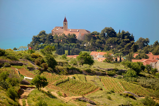 view of Bol  and its vineyards, Bra? island, Croatia