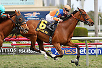 HALLANDALE BEACH, FL - MARCH 05:       #6 Olorda (GER) with Julien Leparoux on board wins the 32nd running of The Very One Stakes G3 at Gulfstream Park on March 5th, 2016 in Hallandale Beach, Florida. (Photo by Liz Lamont)