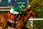 OCT 03, 2021: My Sister Nat (FR), ridden by Jose Ortiz, wins the  Gr.3  Waya Stakes, 1 3/8 mile on the turf, at Belmont Park, Elmont, NY.  Sue Kawczynski/Eclipse Sportswire/CSM