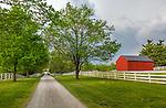 Harrodsburg, Kentucky: Tree lined lane in the Shaker Village of Pleasant Hill