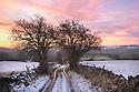 Chertpit Lane below Longstone Moor, Peak District National Park. December.