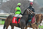 February 28, 2021: Going' Good #1 , ridden by Florent Geroux in the Dixie Belle Stakes for trainer Brad H. Cox at Oaklawn Park in Hot Springs,  Arkansas.  Ted McClenning/Eclipse Sportswire/CSM