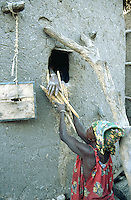 Mali. Province of Mopti. Koporo-Pen. Dogon land. 20 km away from the bottom of the Bandiagara cliff.  Village life. Traditional loft for millet, sorghum and maze. While the old man is cleaning the inside of his loft to put in for storage the fresh harvested millet, his wife loads old millet in a bucket. © 2003 Didier Ruef