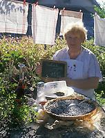 """Europe/France/Limousin/19/Corrèze/Chaumeil : Tarte aux myrtilles de Marcelle Segurel de """"l'Auberge des Bruyères"""" <br /> PHOTO D'ARCHIVES // ARCHIVAL IMAGES<br /> FRANCE 2000"""