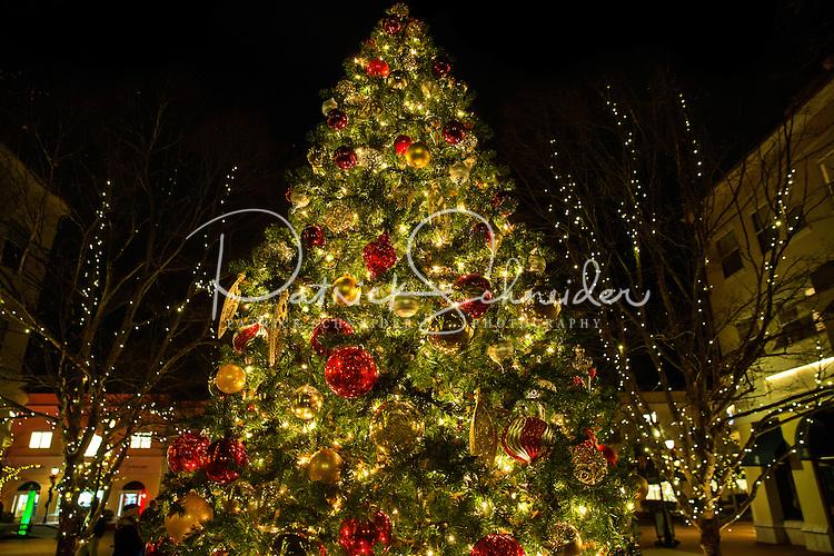 Charlotte Christmas Events - Photography of the Phillips Place Winter Wonderland Christmas event in Charlotte, North Carolina.<br /> <br /> <br /> Charlotte Photographer - PatrickSchneiderPhoto.com