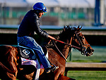LOUISVILLE, KY - APRIL 30: Coach Rocks, trained by Dale Romans, exercises in preparation for the Kentucky Oaks at Churchill Downs on April 30, 2018 in Louisville, Kentucky. (Photo by Scott Serio/Eclipse Sportswire/Getty Images)