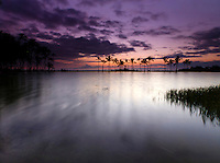 Dusk at 'Anaeho'omalu Bay, as seen from the Ku'uali'i fishpond, Waikoloa, Big Island.