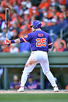Clemson Tigers catcher Chris Okey (25) awaits a pitch during a game against the South Carolina Gamecocks at Fluor Field on March 5, 2016 in Greenville, South Carolina. The Tigers defeated the Gamecocks 5-0. (Tony Farlow/Four Seam Images)