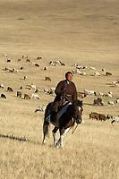 Nomad man herding cattle