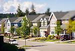Neighborhood in Spring