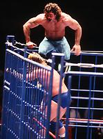 Rick Rude Roddy Piper 1989                                          Photo By John Barrett/PHOTO link