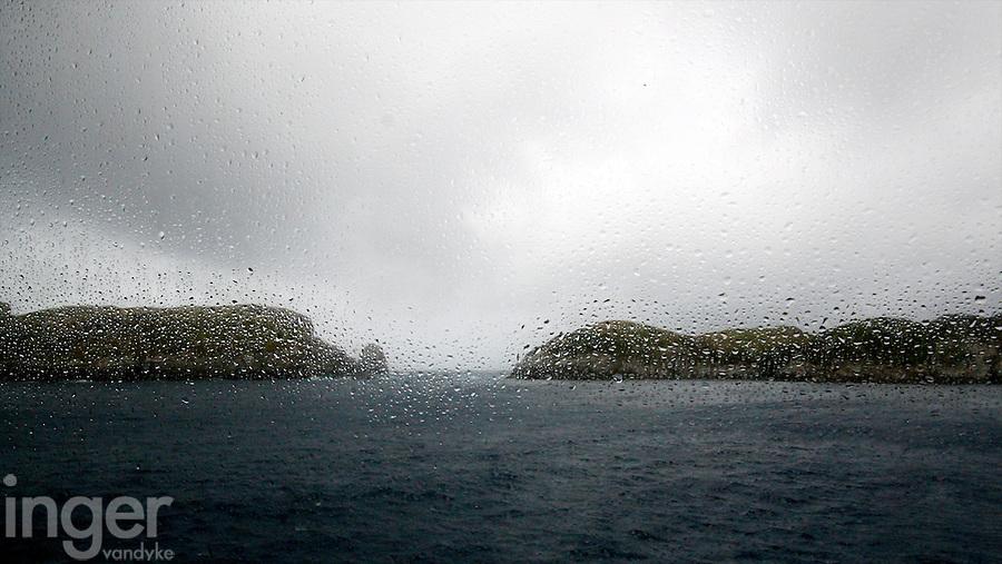 Snares Islands, Antarctica