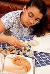 9 year old girl categorizing her shell collection Hispanic American Dominican vertical