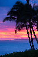 Palm trees silhouetted at sunset on Kauai's south shore in Poipu.  A blazing purple sunset illuminates the sky.
