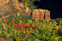 Fall colors viewed from atop Angel's Landing in Zion National Park, Utah. Utah, Zion National Park, Angel's Landing.