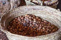 Morocco.  Argan Nuts, Source of Argan Oil.