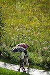 Deutschland, Bayern, Oberbayern, Werdenfelser Land, Kruen: Spaziergaenger im Regen | Germany, Upper Bavaria, Werdenfelser Land, Kruen: walking in the rain