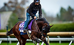 October 30, 2020: Jesus' Team, trained by trainer Jose Francisco D'Angelo, exercises in preparation for the Breeders' Cup Dirt Mile at Keeneland Racetrack in Lexington, Kentucky on October 30, 2020. Alex Evers/Eclipse Sportswire/Breeders Cup
