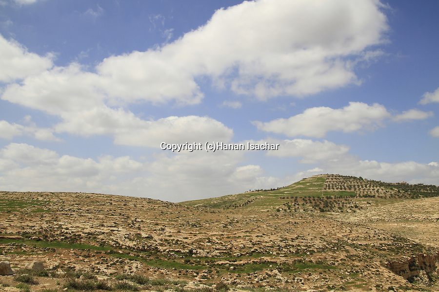 Southern Hebron Mountains, Tel Maon, site of biblical Maon