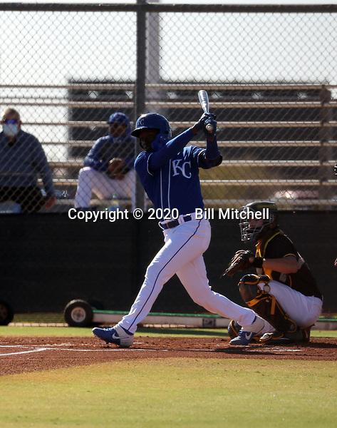 David Hollie - 2020 AIL Royals (Bill Mitchell)