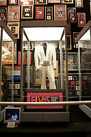 Graceland, home of Elvis Presley outfit 4 - sahara - Tahoe