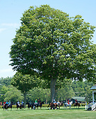 Jumpers circle in the Saratoga infield before a race during the Open House.