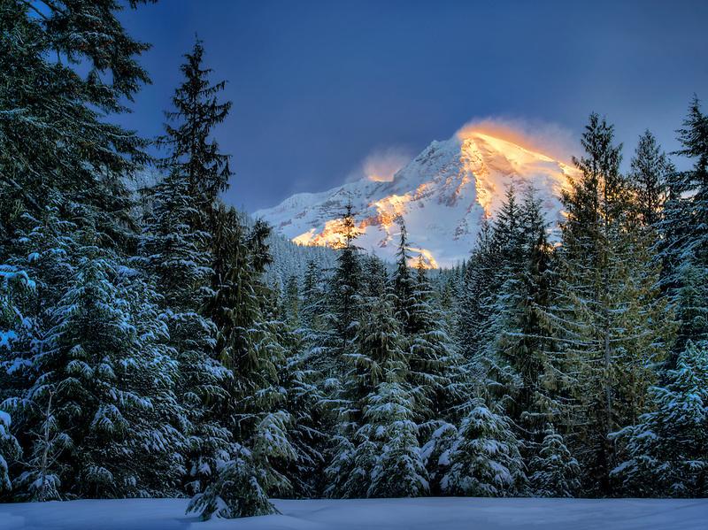 Mt. Rainier after snowstorm. Mt. Rainier National Park, Washington