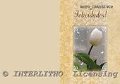 Alfredo, FLOWERS, paintings, BRTOCH40519CP,#F# Blumen, flores, illustrations, pinturas