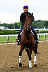June 4, 2015: Keen Ice, trained by Dale Romans, exercises in preparation for the 147th running of the Belmont Stakes in Elmont, New York. John Voorhees/ESW/CSM
