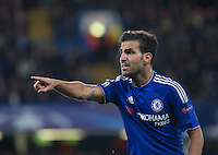 Cesc Fabregas of Chelsea gives orders during the UEFA Champions League match between Chelsea and Maccabi Tel Aviv at Stamford Bridge, London, England on 16 September 2015. Photo by Andy Rowland.