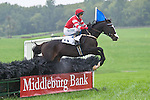 1 October 2011: Black Bag and Paddy Young win the Daniel C. Sands Cup hurdle at Virginia Fall Races in Middleburg, Va. Black Bag is owned by Donna Kachel and trained by Ricky Hendricks. Susan M. Carter/Eclipse Sportswire