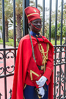 Dakar, Senegal.  Presidential Guard in front of the Presidential Palace.