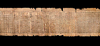 "Ancient Egyptian Book of the Dead papyrus - Spell 81a assuming the form of a lotus associated with the sun god, Iufankh's Book of the Dead, Ptolemaic period (332-30BC).Turin Egyptian Museum.  Black background<br /> <br /> The spell reads "" I am a pure lotus that has ascended by the Sinlight and ia at Ra's nose. I spend my time shedding it on Horus. I am the pure lotus that ascended from the field"". <br /> <br /> The translation of  Iuefankh's Book of the Dead papyrus by Richard Lepsius marked a truning point in the studies of ancient Egyptian funereal studies."