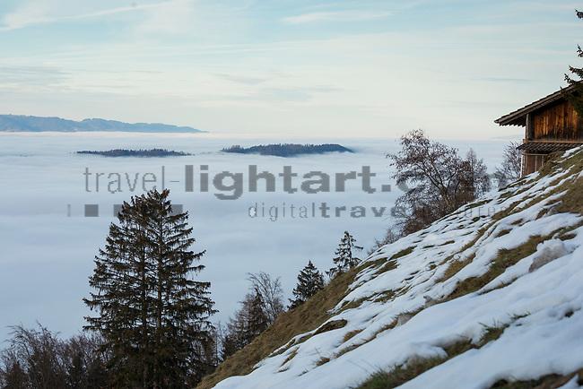 Planken, Nebelmeer über dem Rheintal, sea of fog over Rhine-valley, Liechtenstein.<br /> Foto: Paul J. Trummer