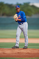 GCL Mets relief pitcher Dedniel Nunez (29) gets ready to deliver a pitch during a game against the GCL Cardinals on July 23, 2017 at Roger Dean Stadium Complex in Jupiter, Florida.  GCL Cardinals defeated the GCL Mets 5-3.  (Mike Janes/Four Seam Images)