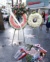 Debbie Reynolds Memorial on WOF star