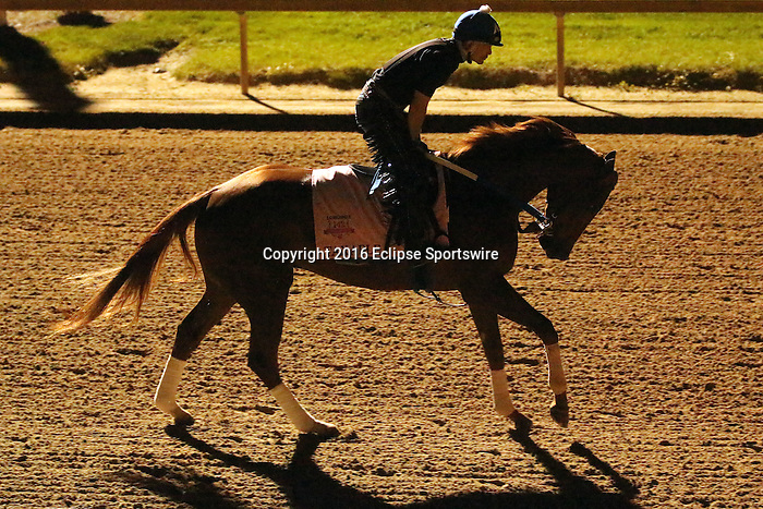 LOUISVILLE, KY - APRIL 20: Taxable (Tapit x Jackpot Joanie, by Giant's Causeway) gallops in preparation for the Kentucky Oaks with exercise rider Abel Flores at Churchill Downs, Louisville KY. Owner Winchell Thoroughbreds LLC, trainer Steven M. Asmussen. (Photo by Mary M. Meek/Eclipse Sportswire/Getty Images)