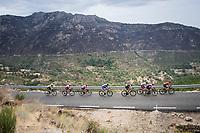 breakaway group up the first categorised climb of the day: the Puerto de Bernardo<br /> <br /> Stage 20: Arenas de San Pedro to Plataforma de Gredos (190km)<br /> La Vuelta 2019<br /> <br /> ©kramon