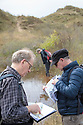 Volunteers surveying for tadpoles and spawn of the Natterjack Toad (Epidalea calamita) in pond in a dune slack, Ainsdale Nature Reserve, Merseyside, UK. May.