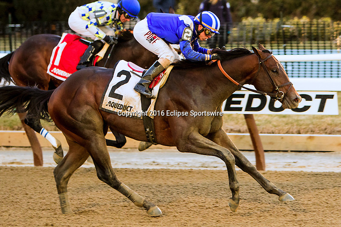 OZONE PARK, NY - MARCH 05: Shagaf #2 with Irad Ortiz, Jr. on Gotham Stakes Day at Aqueduct Race Track in Ozone Park, New York on March 5, 2016. (Photo by Sue Kawczynski)