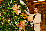 Niamh O'Neill and the staff in the Plaza Hotel are hanging the decorations for the Christmas season
