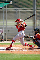 GCL Cardinals Tyler Reichenborn (15) at bat during a Gulf Coast League game against the GCL Astros on August 11, 2019 at Roger Dean Stadium Complex in Jupiter, Florida.  GCL Cardinals defeated the GCL Astros 2-1.  (Mike Janes/Four Seam Images)