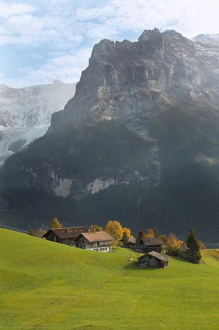 Swiss houses on high Alpine pastures looking towards the Wetterhorn - Grindelwald Switzerland