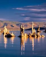 Reflection of tall, thin tufa in Mono Lake. California.